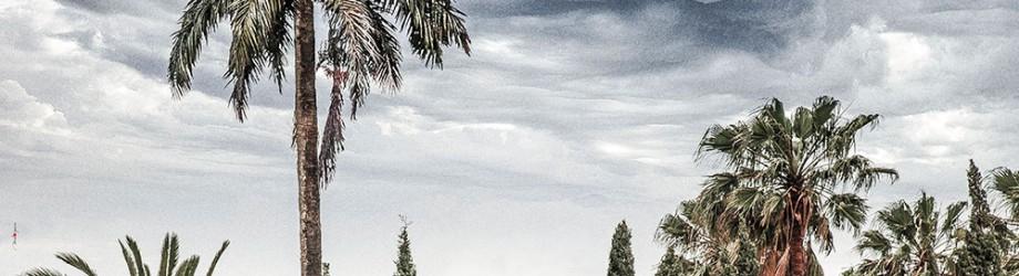 Hammamet - Buonconvento